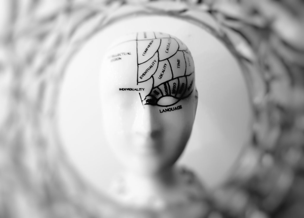 Brain_Photo by Meo from Pexels